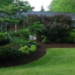 Fresh mulched and edged gardens in Wayne New Jersey