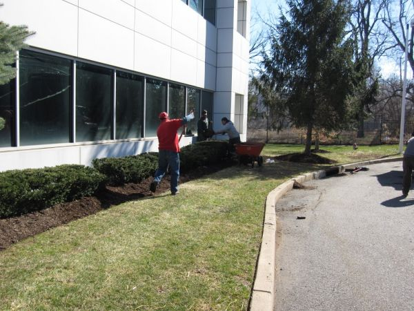 Commercial Landscaping Services - mulch installation