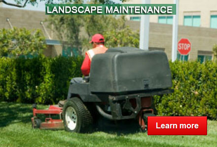 Landscape Maintenance - By Advanced Land Management