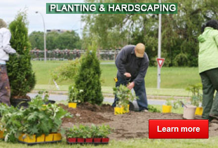Planting & Hardscaping - By Advanced Land Management