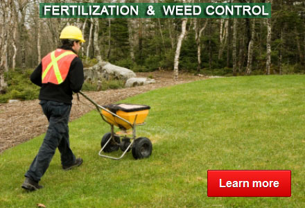 Fertilization & Weed Control - By Advanced Land Management